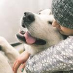 FÜR einen tierschutzkonformen Umgang mit Hunden