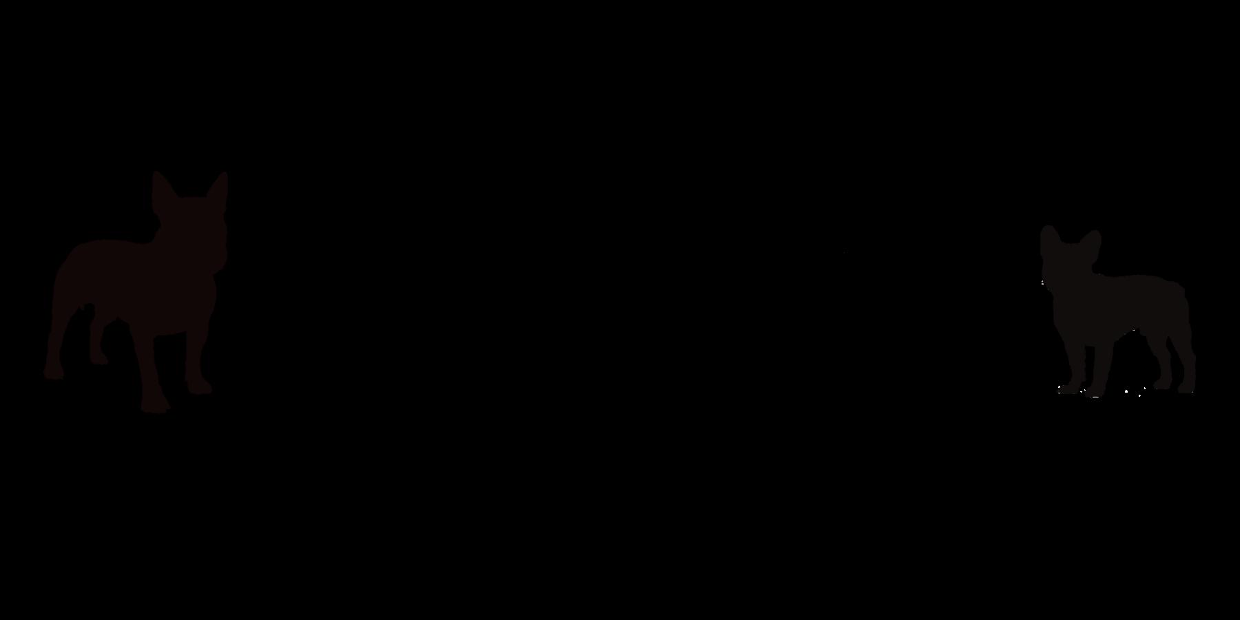 BRA_Logo_schwarz_NEU