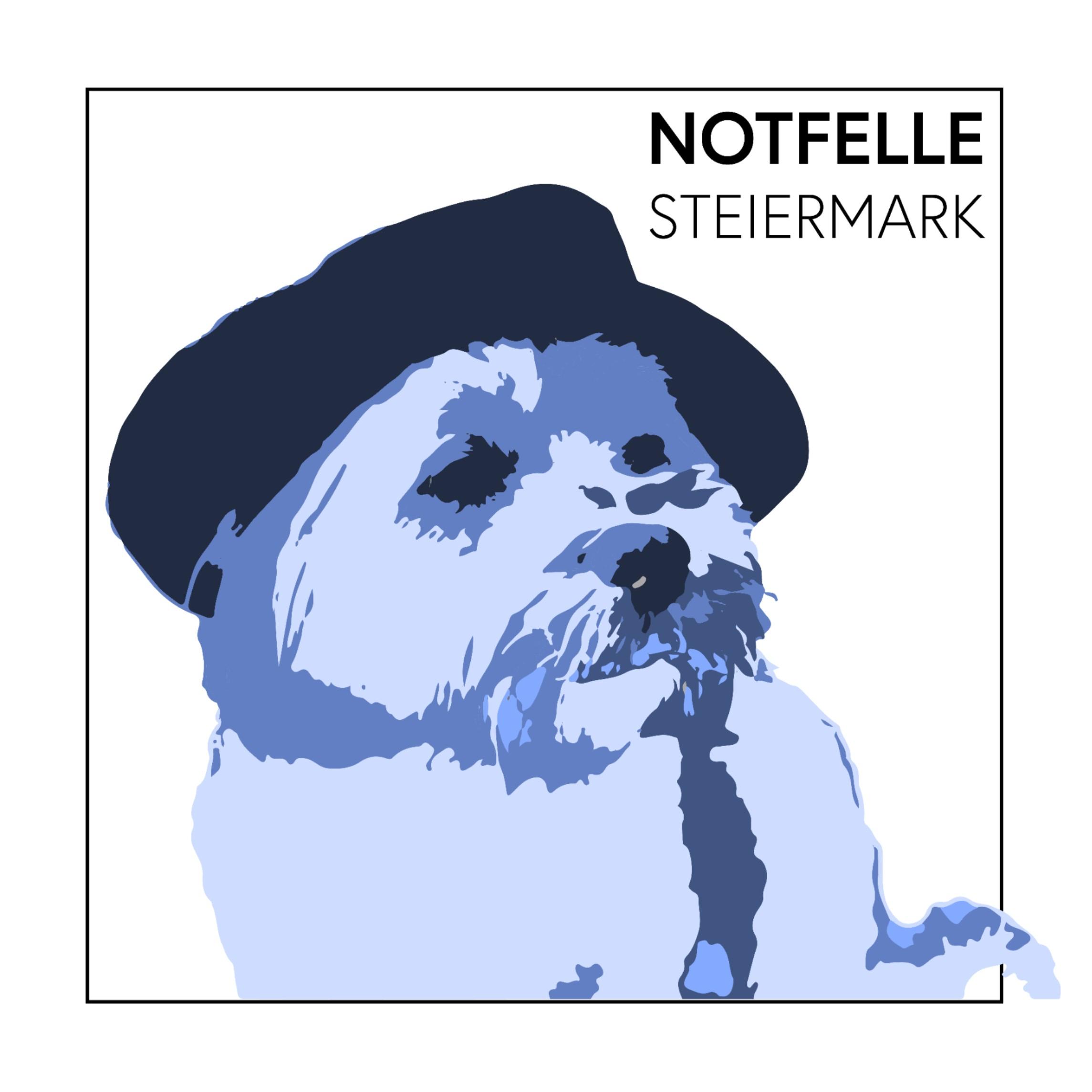 Notfelle Steiermark